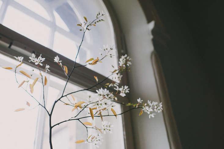 florist sarah statham celebratescharlotte brontë&#8\2\17;s \200th birthd 9