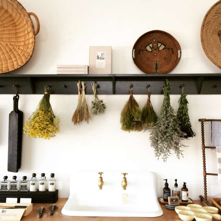 black peg rails hold dried flowers in a dallas shop; seeshopper's diary: th 17