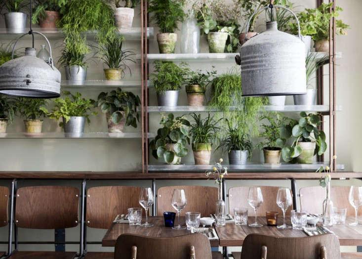 Cofoco Growth Restaurant in Copenhagen
