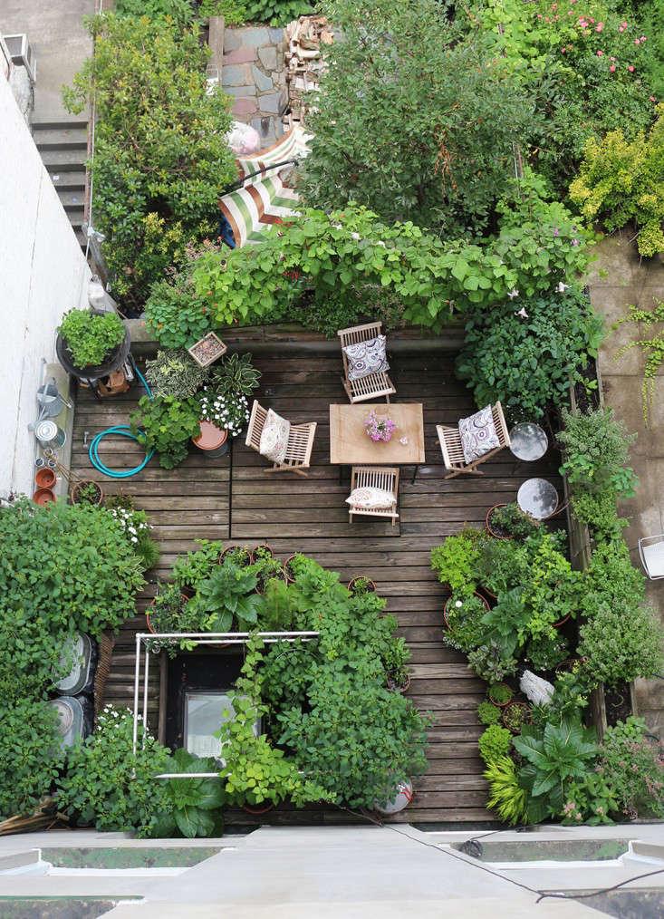 harlem terrace marie viljoen 9