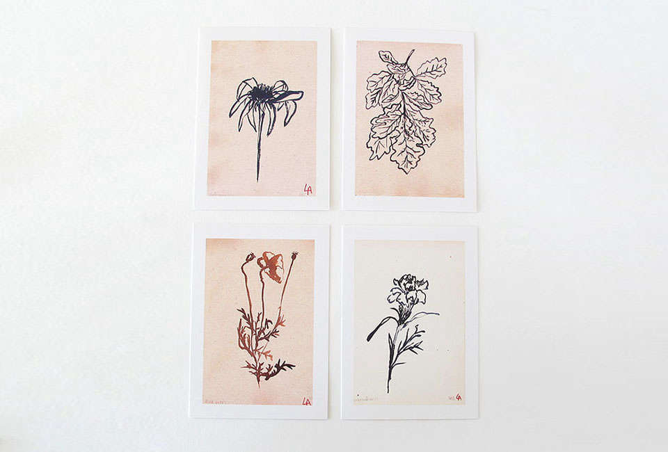 Lucy Auge Botanical Prints