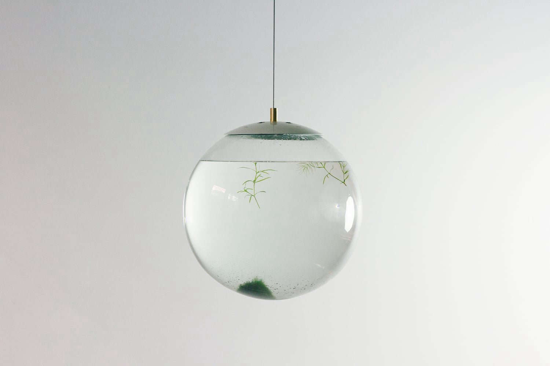 richard clarkson design studio glass terrarium 10