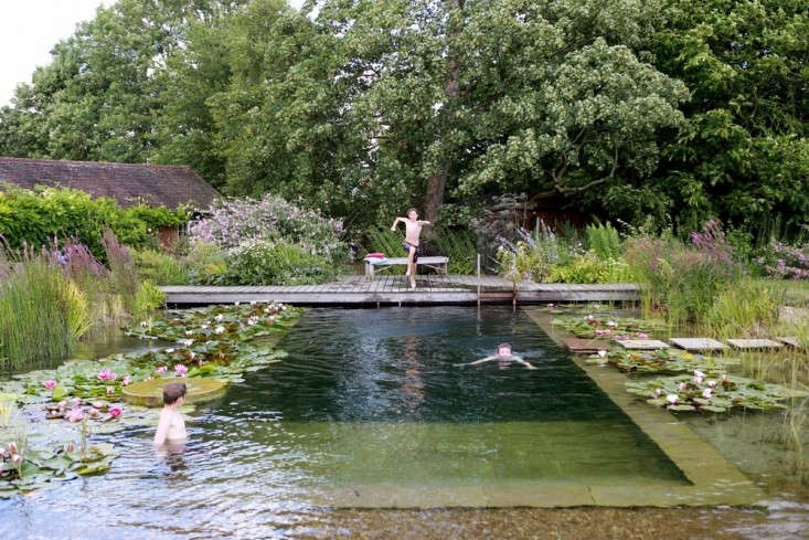 a natural pool in newark on trent in nottinghamshire in the uk is heated from t 12