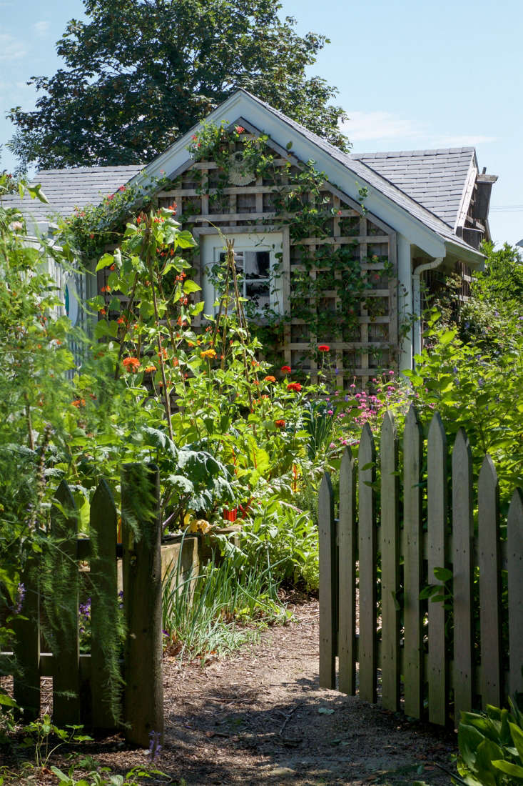 Photograph from Garden Ideas to Steal from Provincetown on Cape Codon Gardenista.