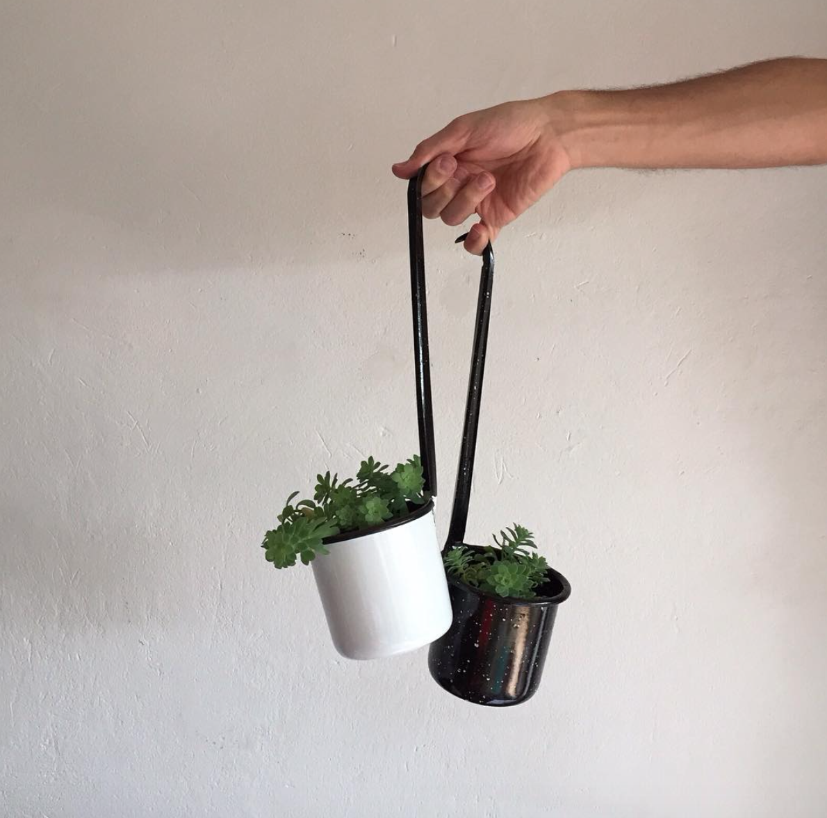Criolla Cucharones with Plants on Remodelista