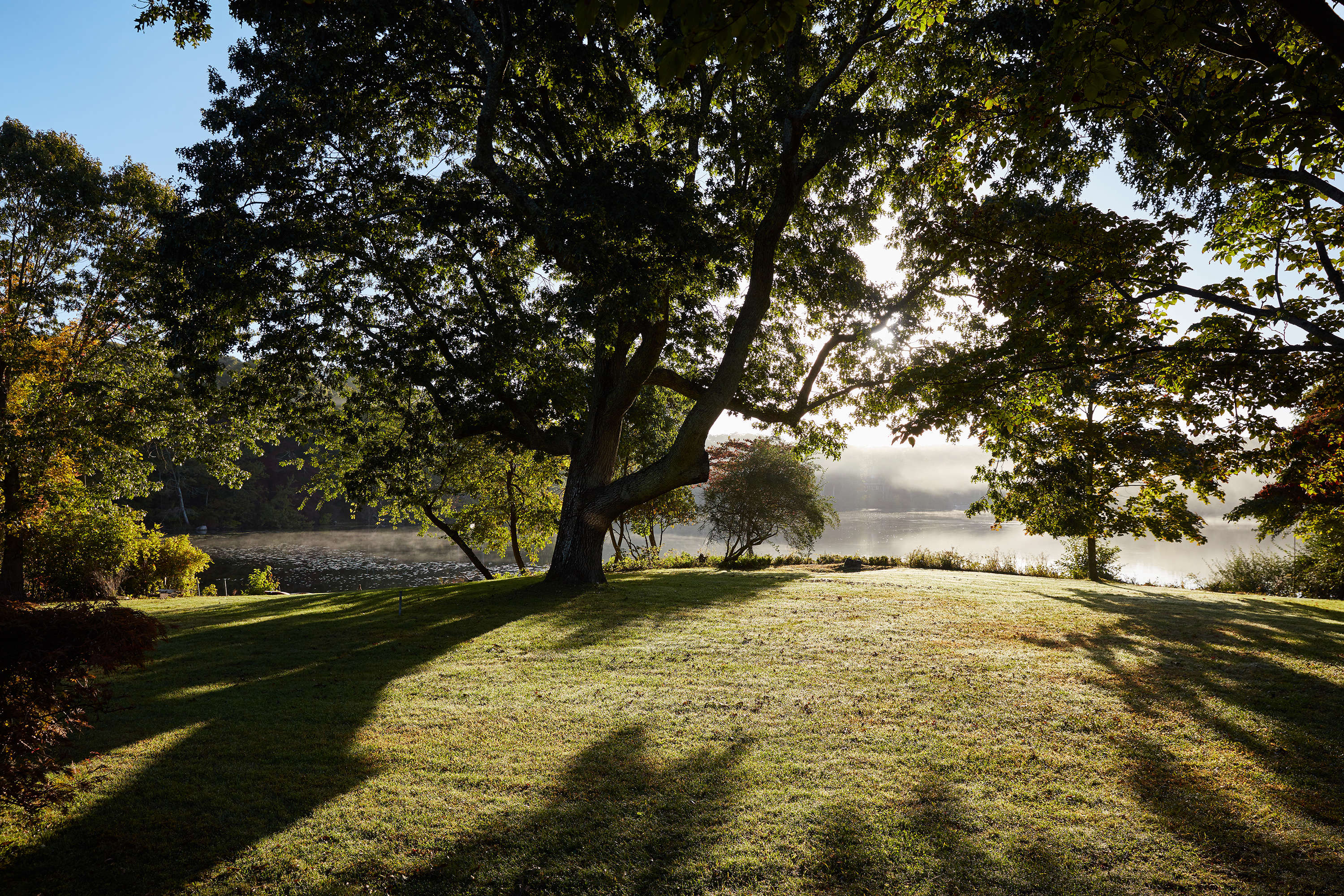 The lakeside property has ancient trees and incredible light.
