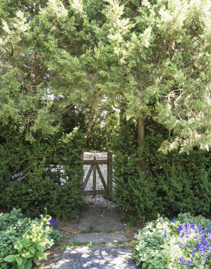 machado silvetti cape cod studio garden matthew williams dsc 7409 12