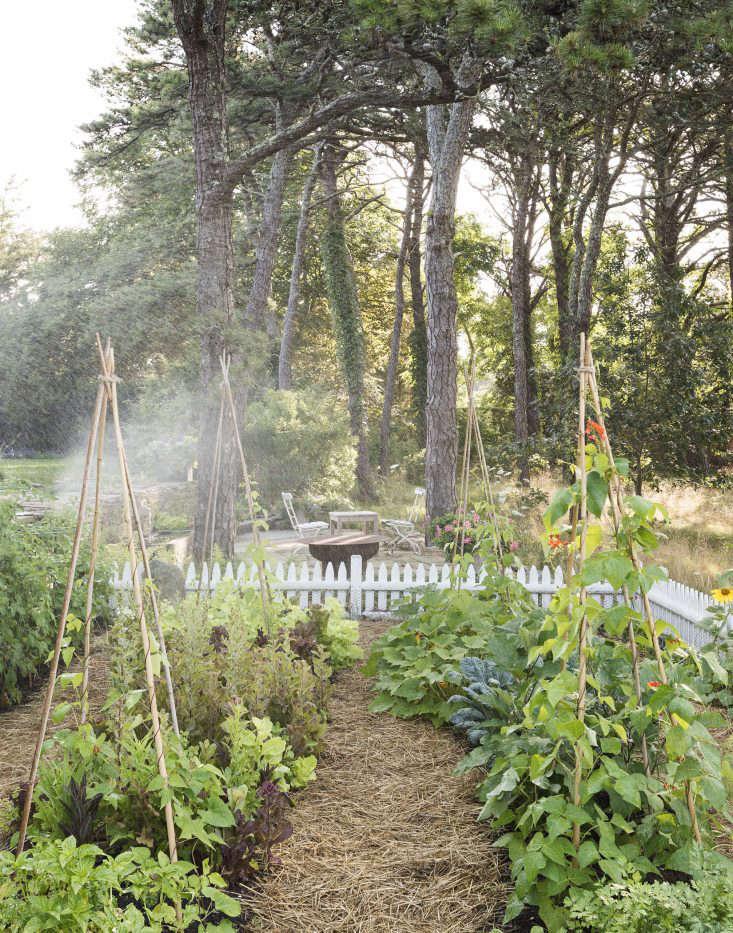 machado silvetti cape cod studio garden matthew williams dsc 7522 dsc 7465 16
