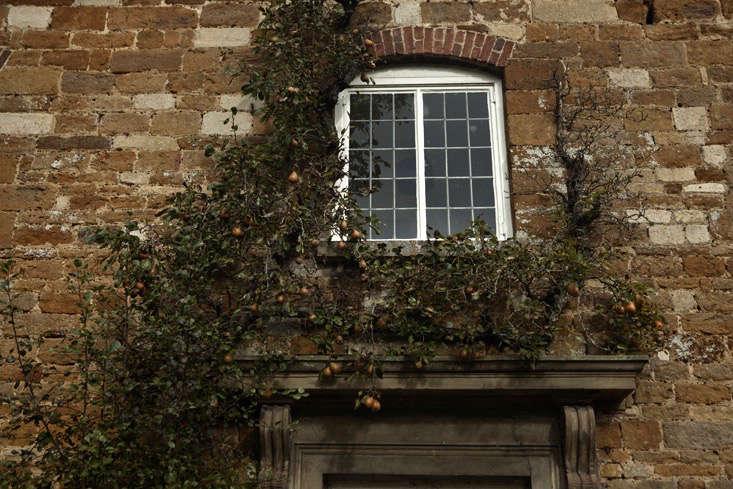 nancy lancaster garden northamptonshire pear tree jim by powell 10