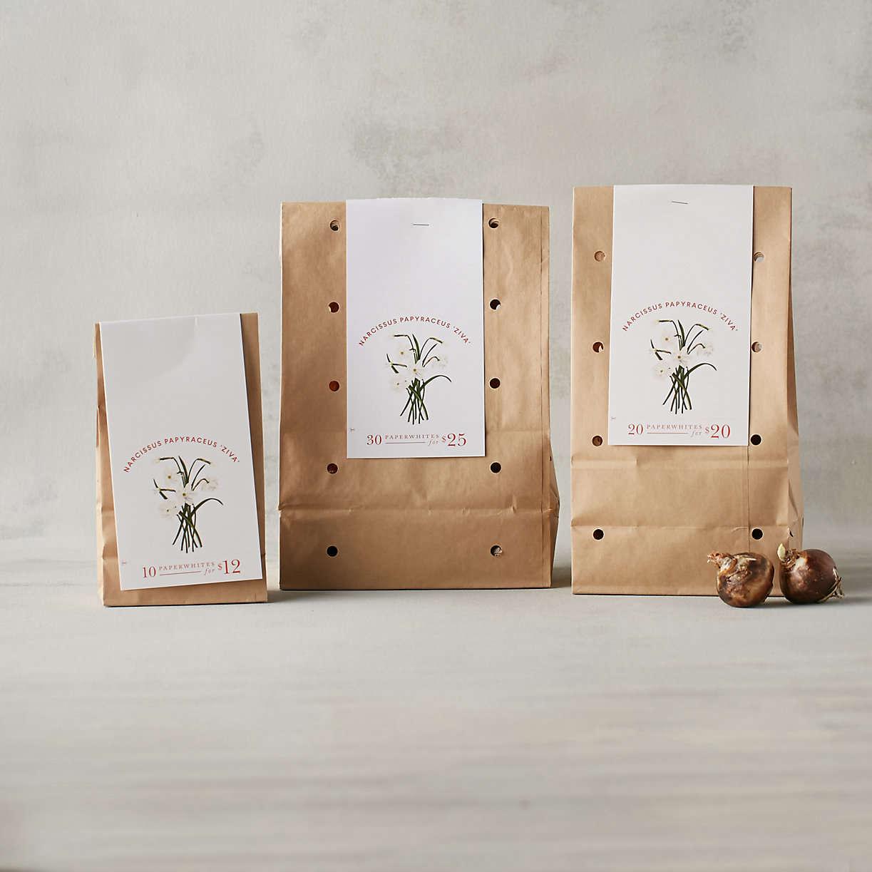 three-bags-of-paperwhite-bulbs-from-terrain