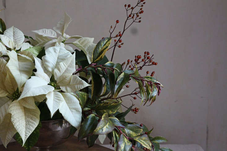 poinsetta bouquet with rose hips justine hand 13