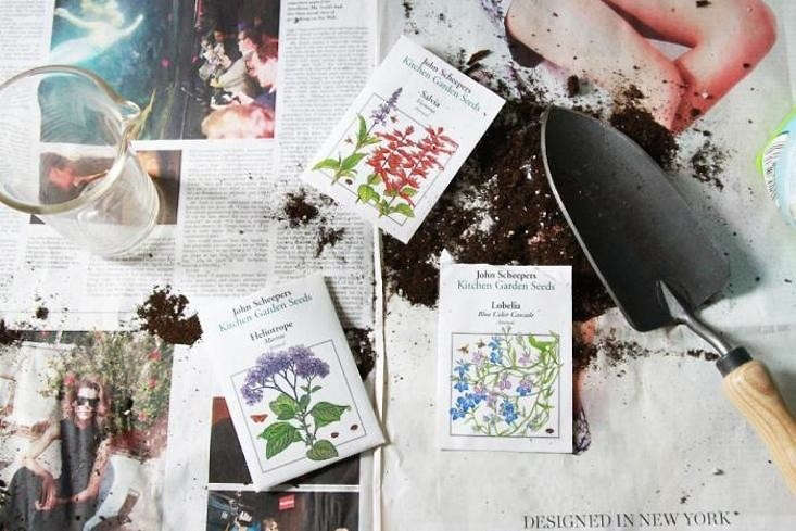 for an eco friendly garden, cultivate heirloom seeds, grow wildflowers, and cap 11