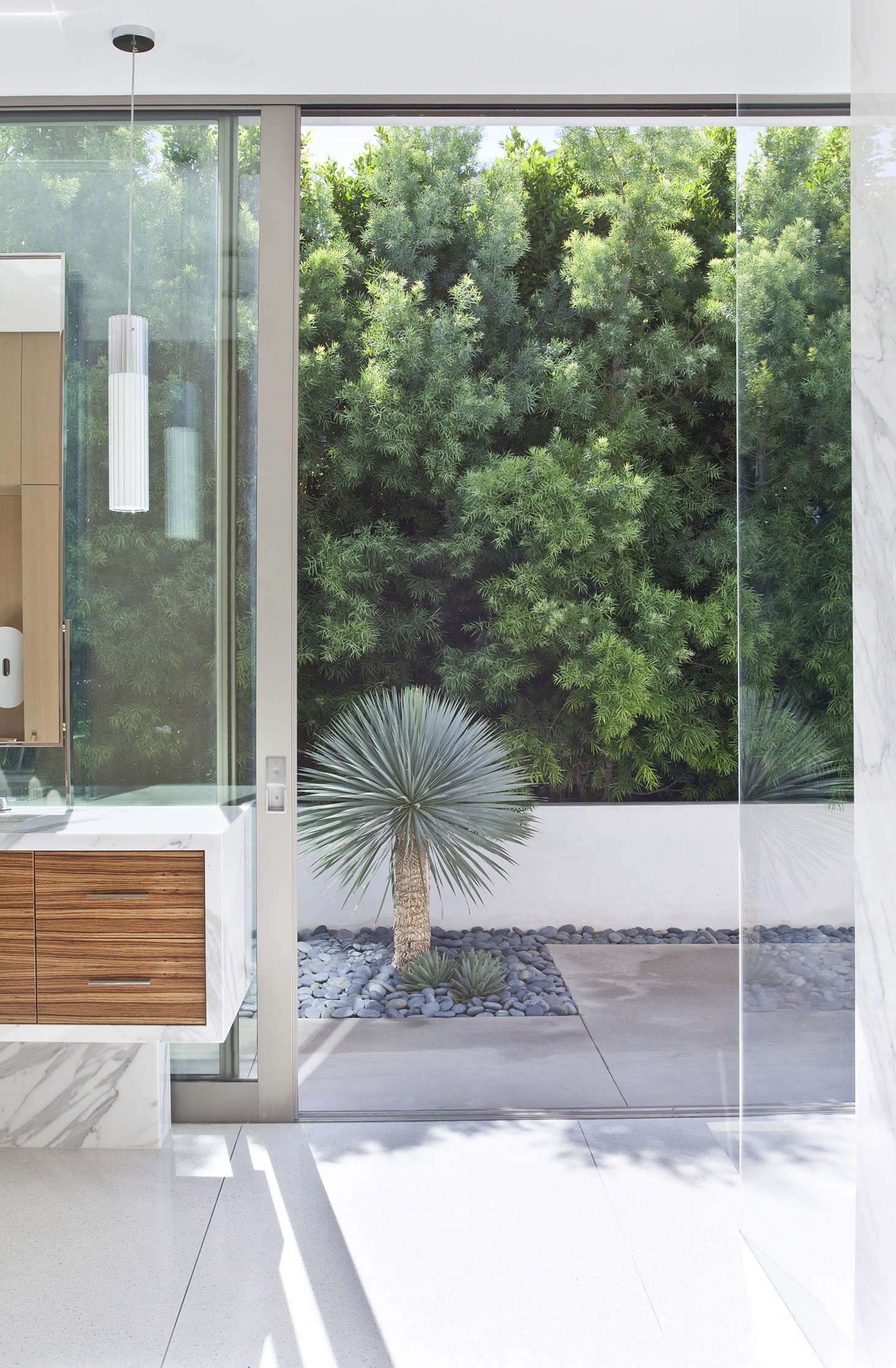 modern-bathroom-with-small-palm-open-to-outdoors