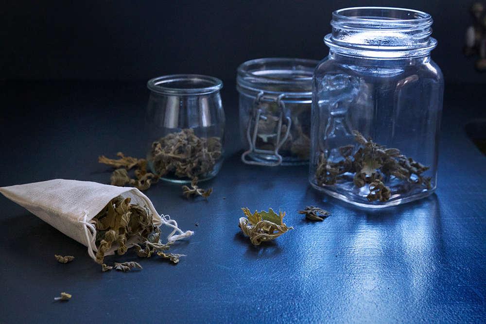 Pelargonium Tea