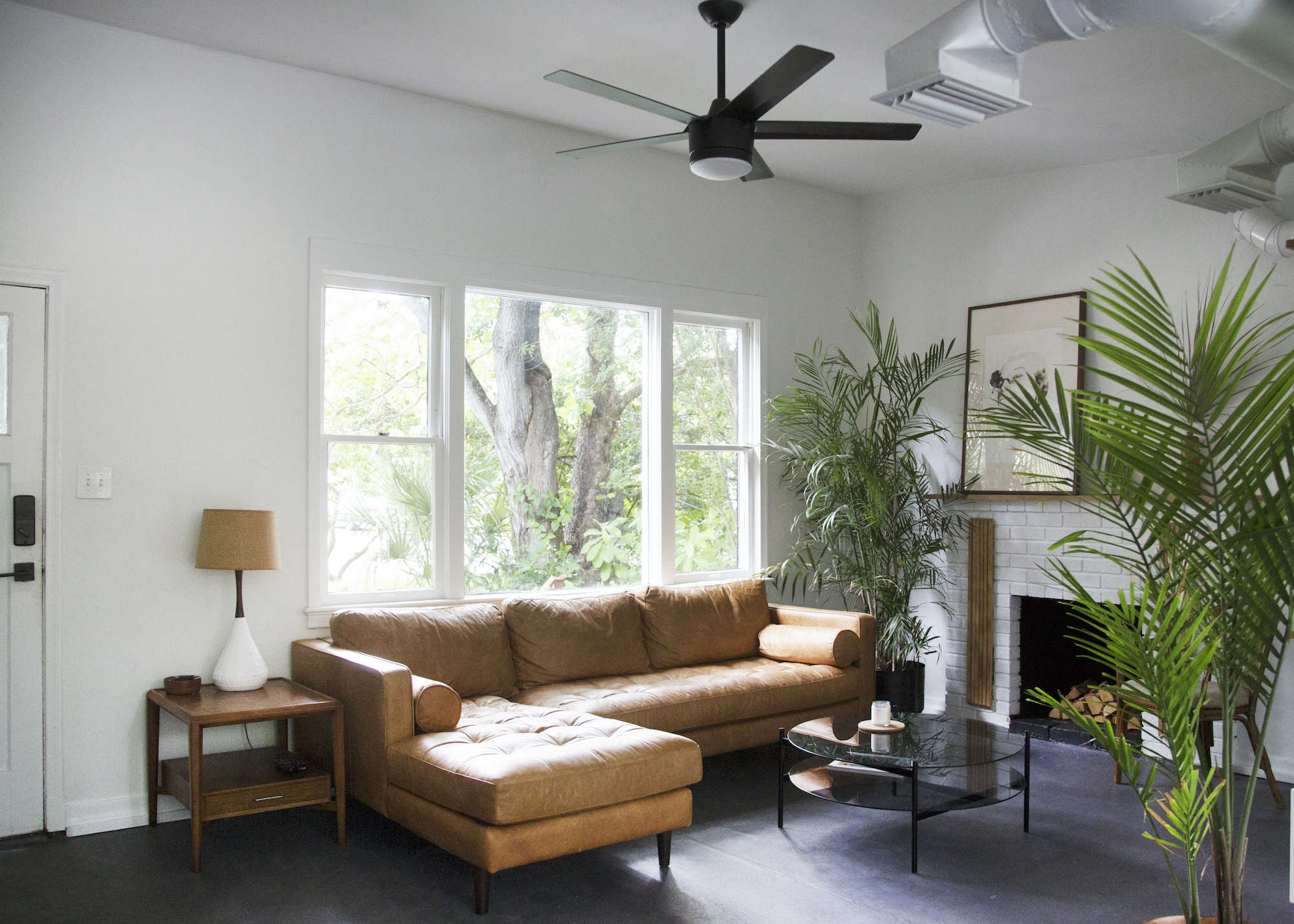brown-leather-rectangular-couch-florida-living-room-plants