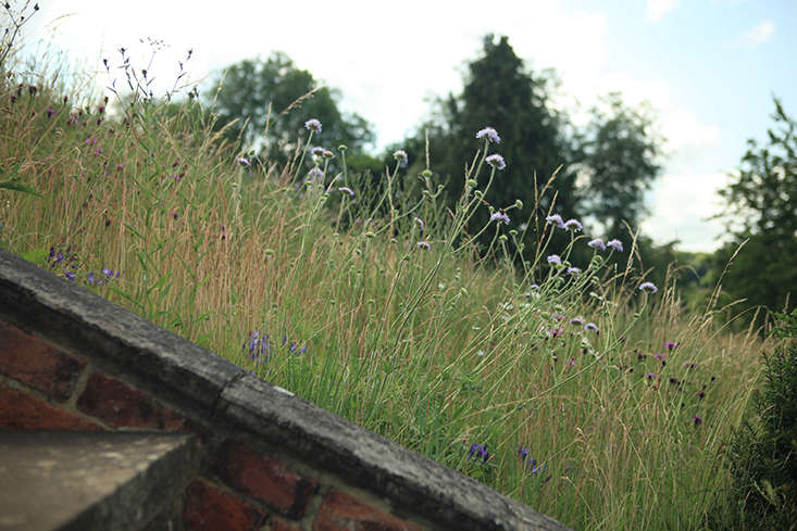 easton walled garden slope, photograph by jim powell 12