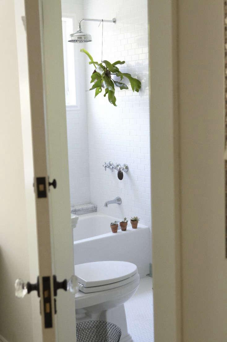 houseplants for a teen bathroom, photograph by katie newburn 9