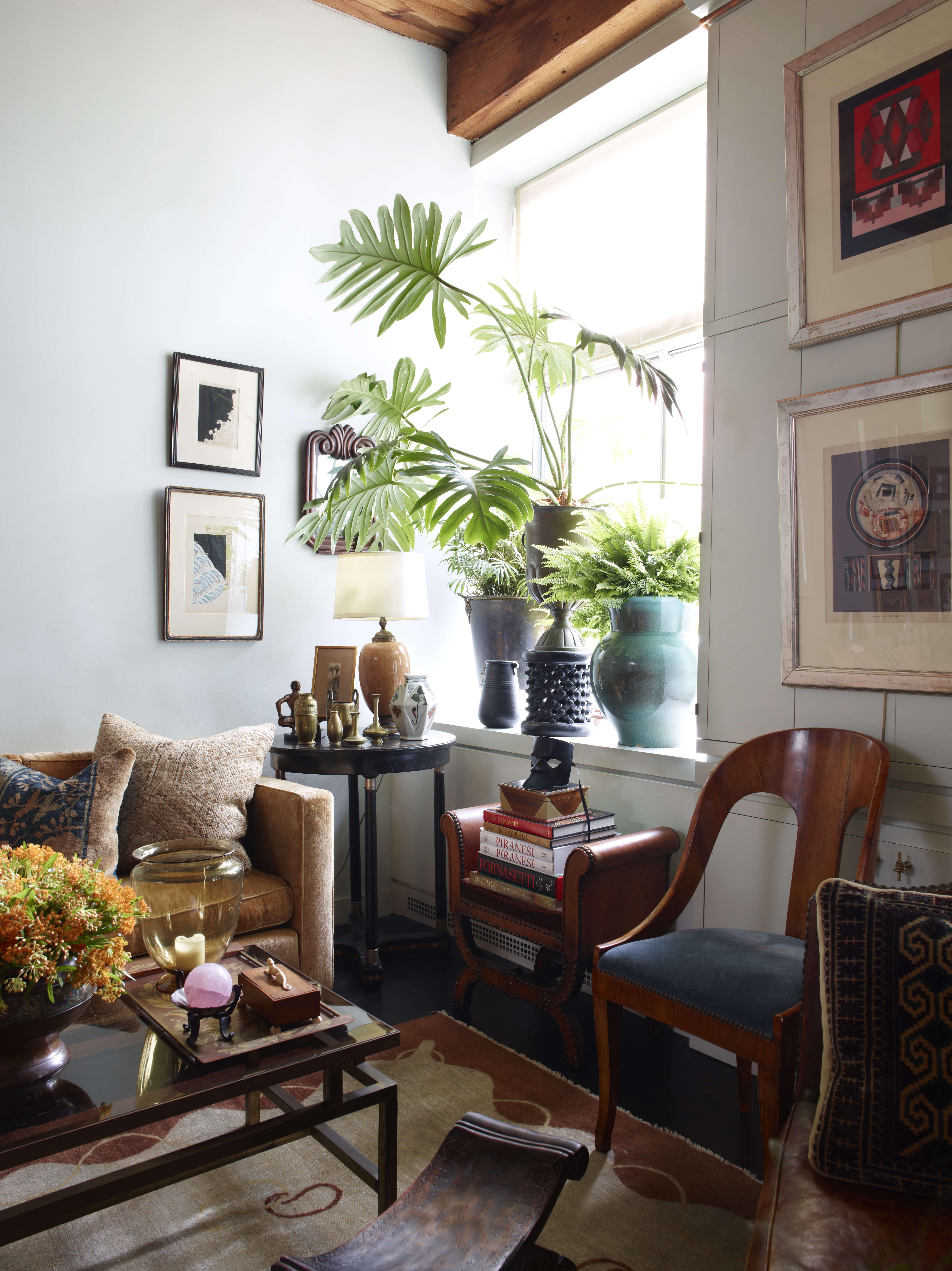 living room artwork on wall plants in window eclectic alexandra loew 14