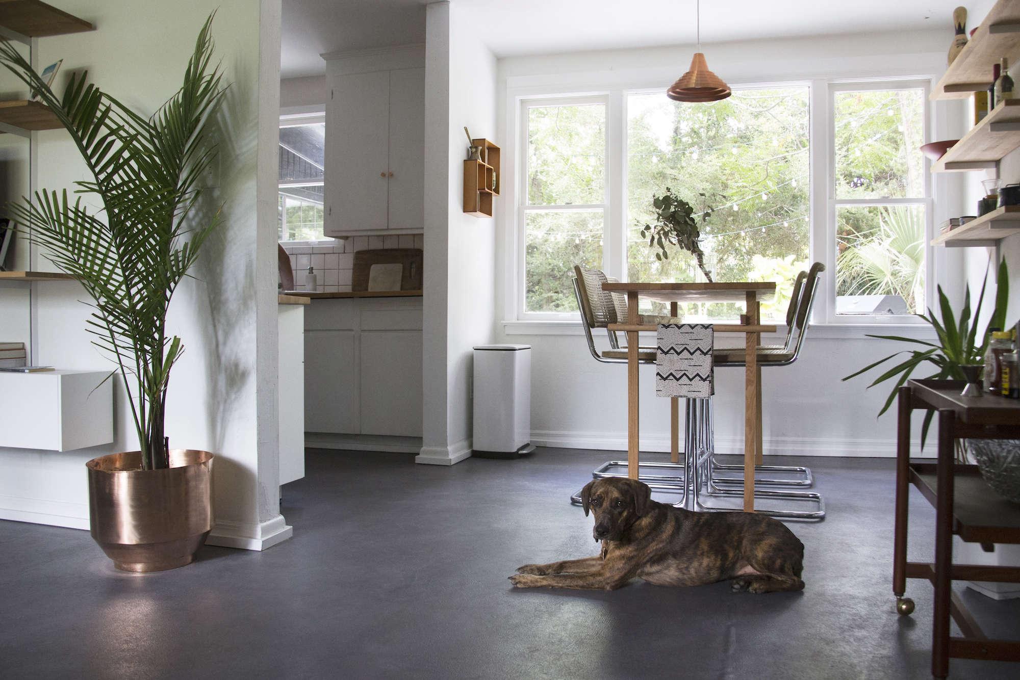 living-room-budget-remodel-dog-concrete-floors-plants-dining-nook