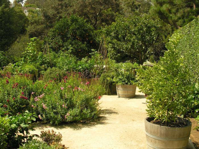 art luna wine barrel planter 13