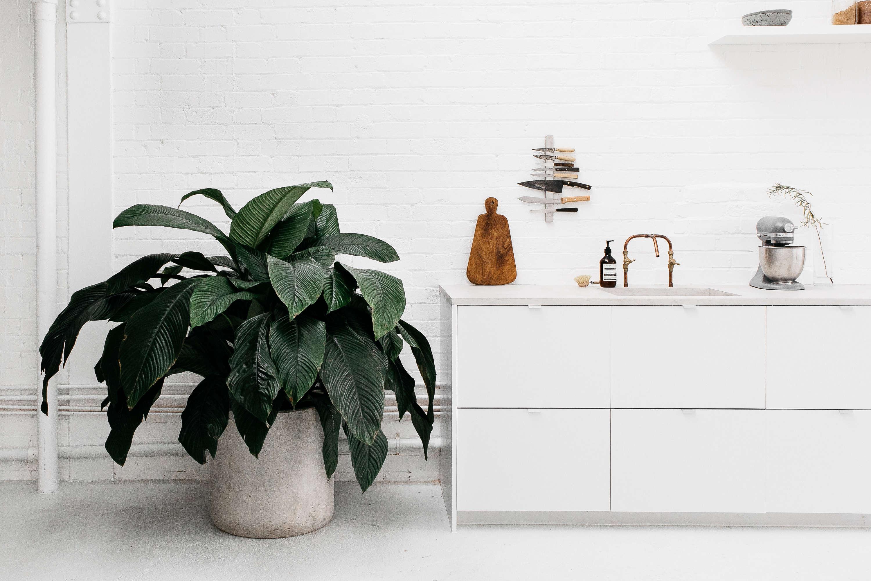 concrete planter, copper diy kitchen faucet, and vertical magnetic knife rack a 14