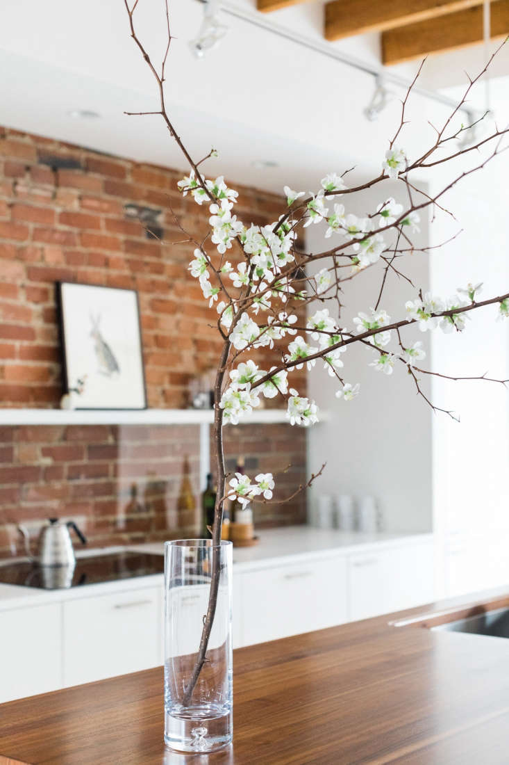 natural elements: a branch of pure, white quince complementsthe walnut waterf 15