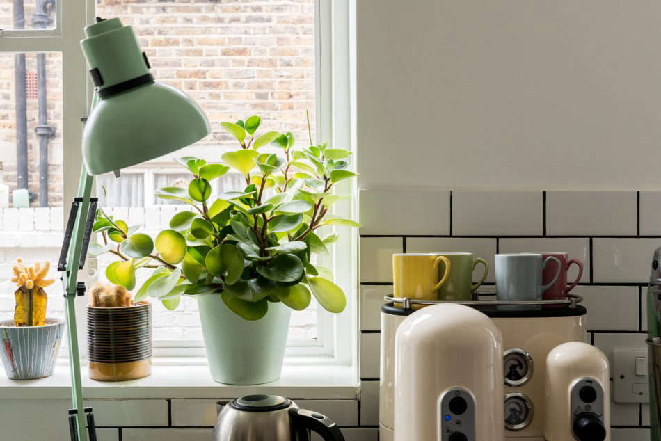 The mint green clip lamp is from Ikea and the ivory espresso machine is KitchenAid.