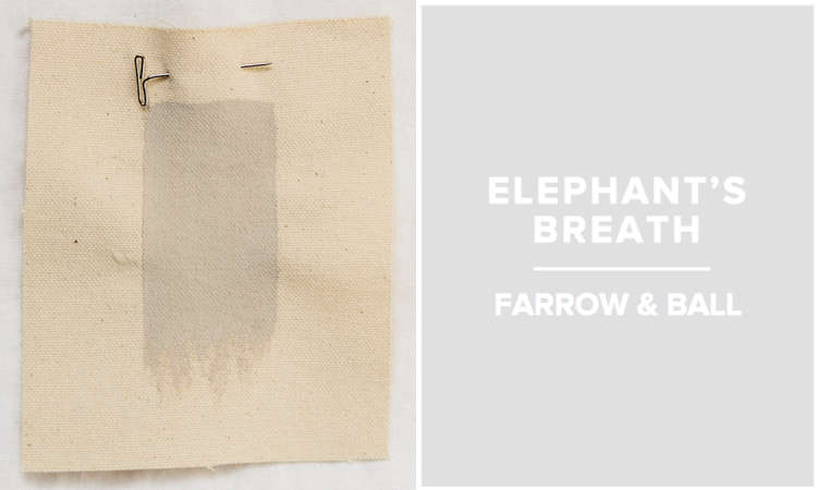 FB Elephants Breath