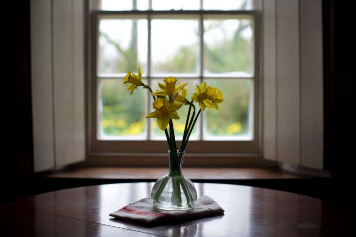 freshly cut daffodils and wildflowers brighten the cottage. 17