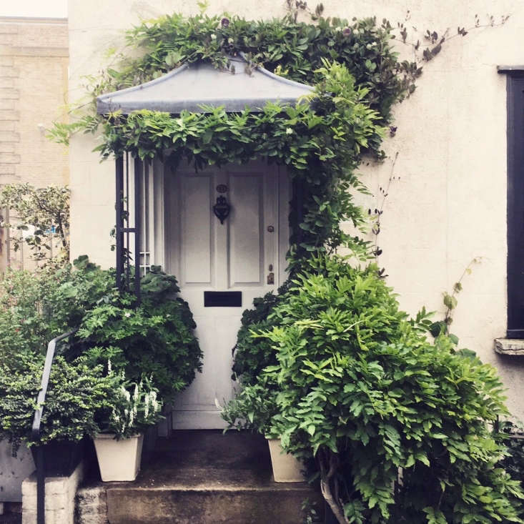 we asked an english gardener and antiques experthow to create a leafy oasis w 14