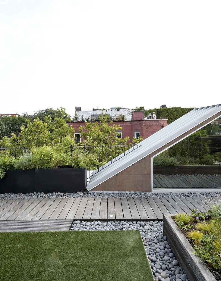 everything you ever wanted to know about growing a rooftop garden escape but fo 10