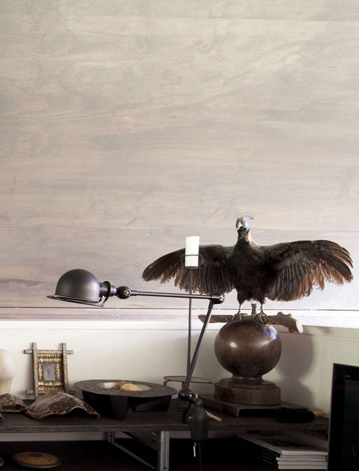 taxidermy in study area seattle modern house plywood walls