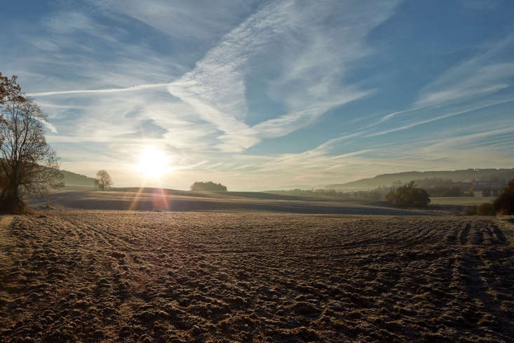 the surrounding fields. 24