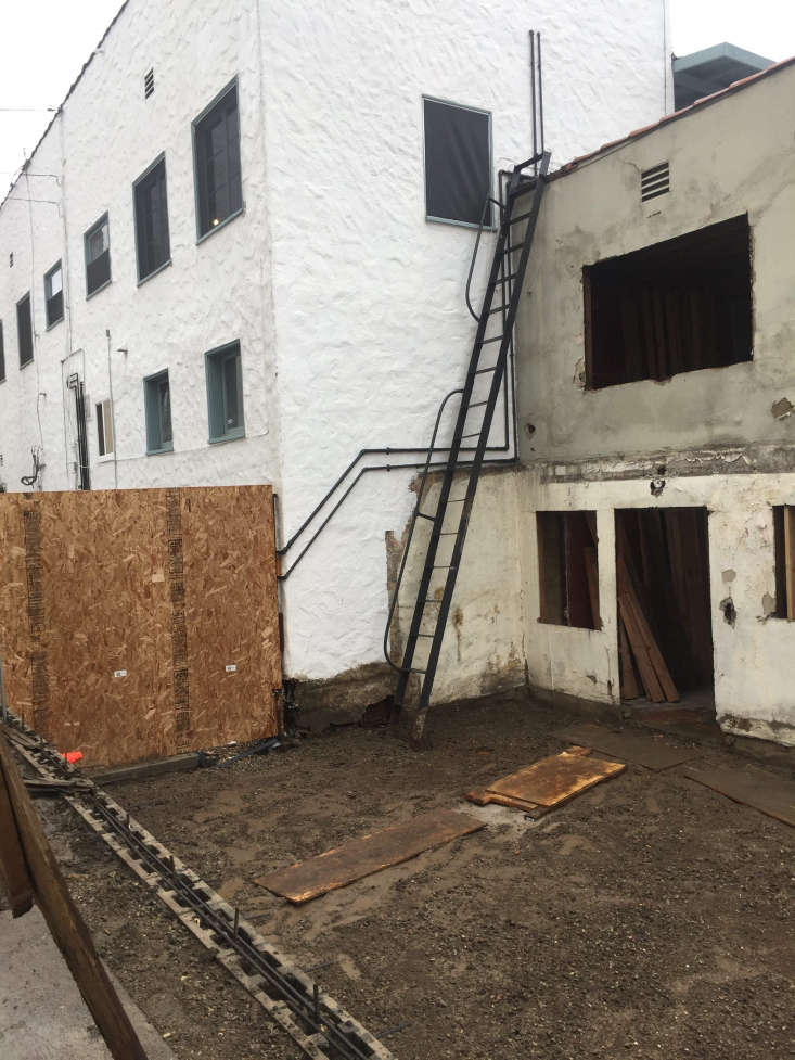 Acoveted garden now lives in the once-empty back lot.Photograph courtesy of Botanica.