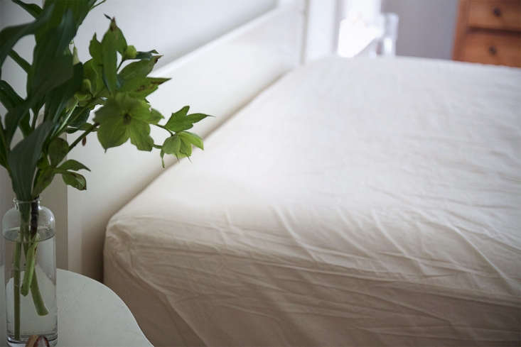 to protect my mattress, ibought analler ease naturals organic cotton allerg 14