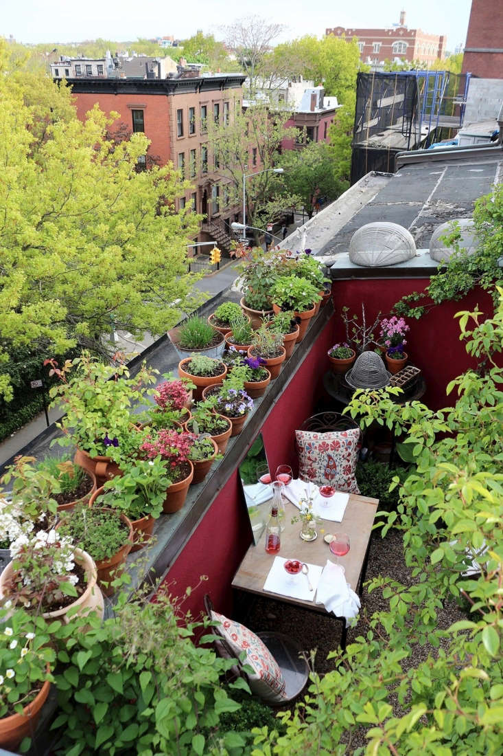 Trending on Gardenista Holiday Weekend A tiny gardengets transported from Brooklyn to Harlem and back again, pots and all. (We think the original Brooklyn location, shown, looks like a particularly inviting place to escape the New York heat). For more, seeMy Brooklyn Garden Rehab: \1,000 Square Feet, Season Two.