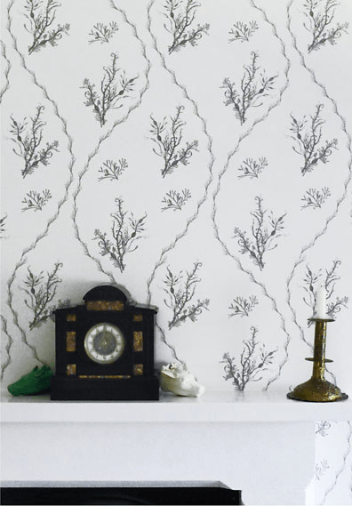 min hogg seaweed wallpaper 2