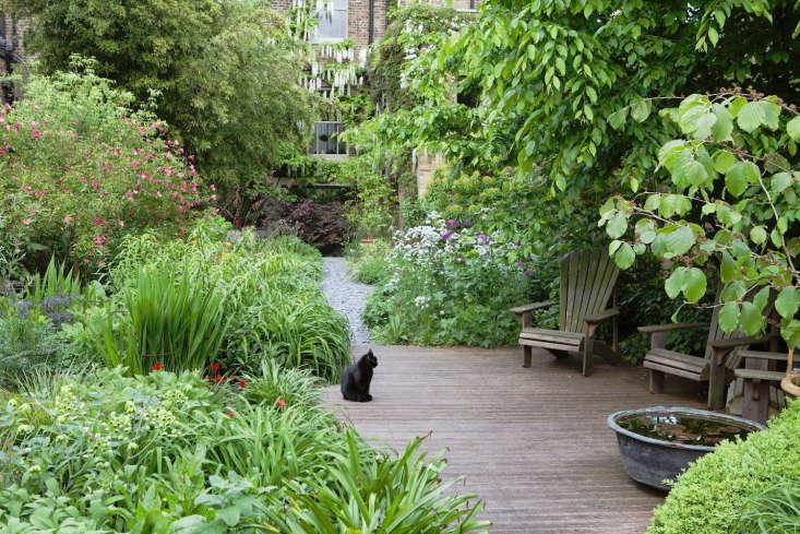 a peek into an english garden designer&#8\2\17;s backyard, cat included. se 13