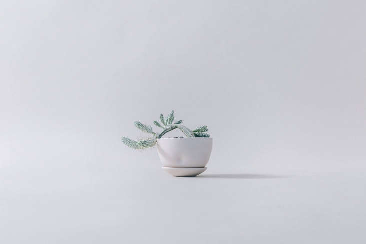 admiringhips planters, this summer&#8\2\17;s collection of simple pots by 11