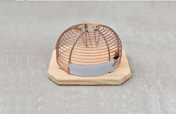 An alternative to the unsightly (and cruel) snap mousetrap: The Humane Mousetrap, available for £loading=
