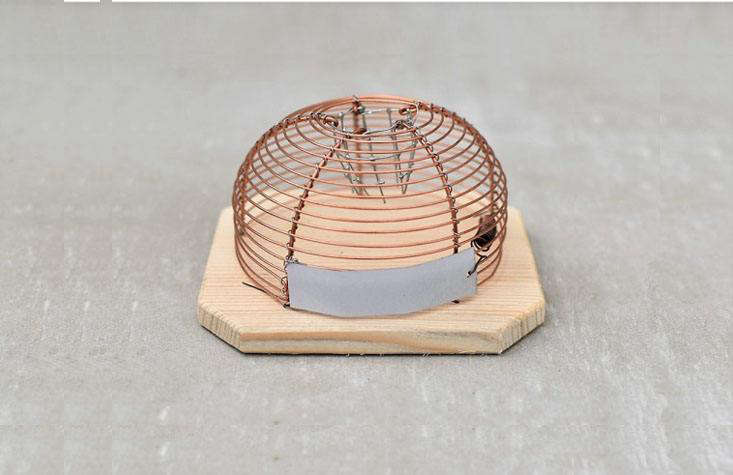 An alternative to the unsightly (and cruel) snap mousetrap: The Humane Mousetrap, available for £src=