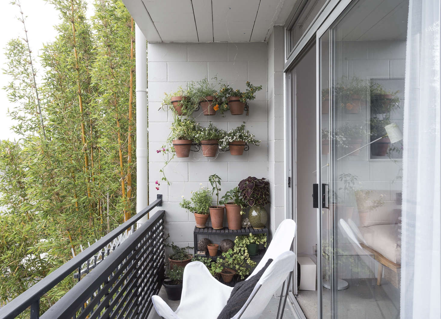 On the 75-square-foot balcony, Spath added white butterfly chairs and a vertical garden of sorts. We offer tips to Steal This Look on Gardenista today. For more ideas, see Rental Garden Makeovers:  Best Budget Ideas for an Outdoor Space on Gardenista.