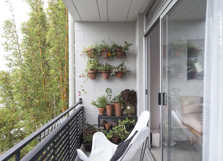 On the 75-square-foot balcony, Spath added white butterfly chairs and a vertical garden of sorts. We offer tips to Steal This Look on Gardenista today. For more ideas, seeRental Garden Makeovers:  Best Budget Ideas for an Outdoor Space on Gardenista.