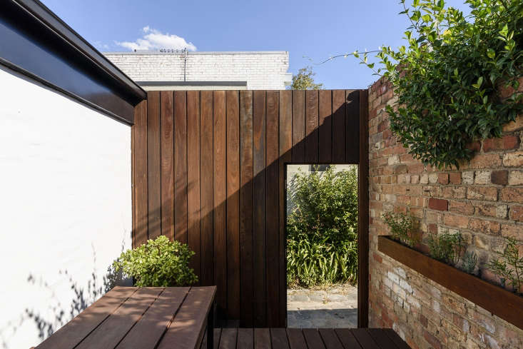 The character and color palette of the interior shifts completely at the back door. Henkell used spotted gum wood and a wall of greenery to give the small back courtyard a grounded feeling.