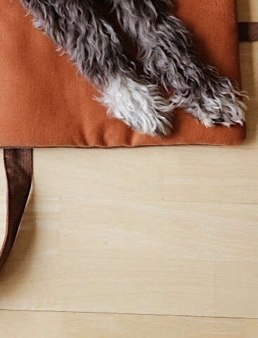 water repellent dog travel bag in rust by patti furry 10