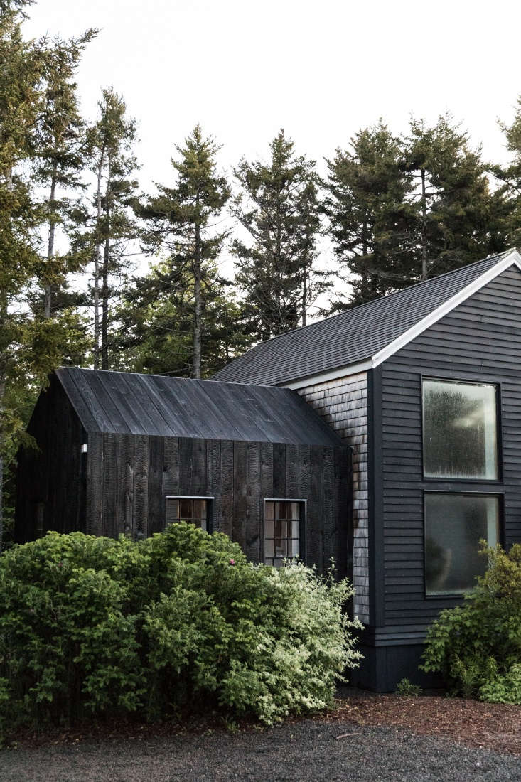 The Soot House, surrounded by wild Maine brush.