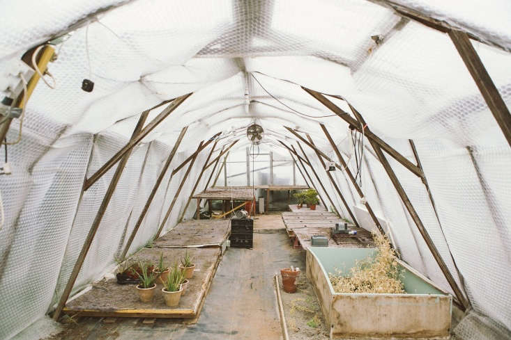 plus, your plants need warm clothes, too. from fleece blankets to hoop houses,  11