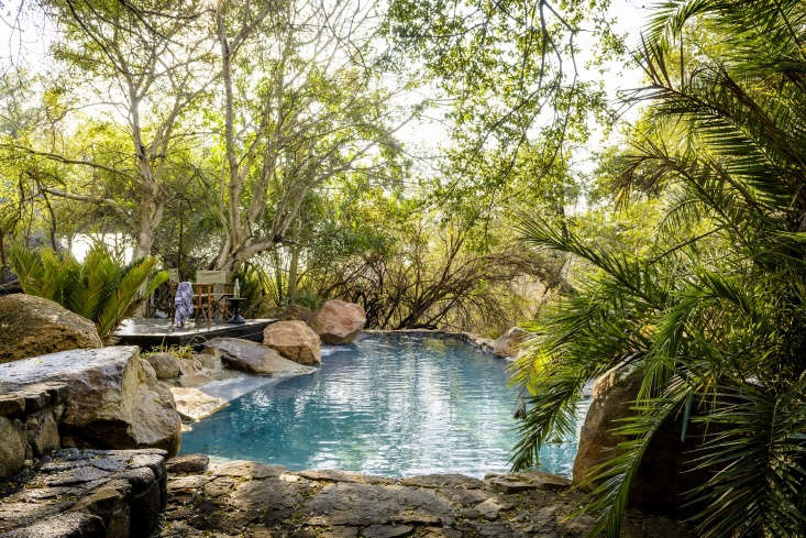 singita ebony lodge south africa design hotel natural pool