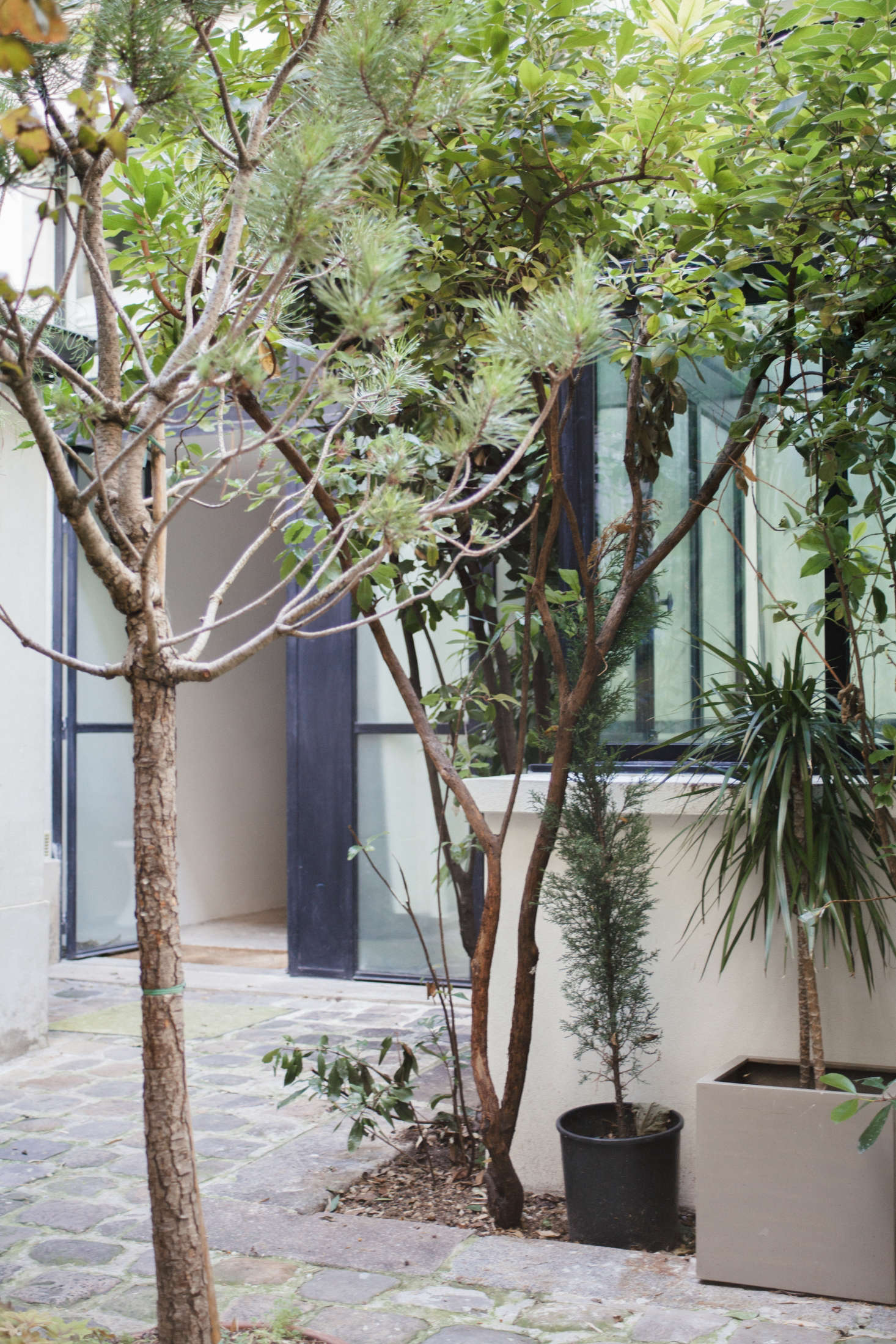 Planted and potted trees create a privacy shield.