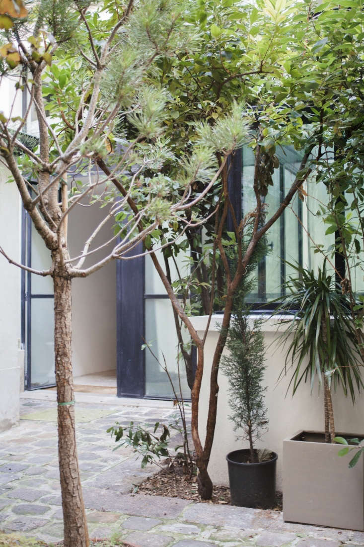 Modern Thrift Lucile Demorys ArchitectDesigned Rental in Paris Planted and potted trees create a privacy shield.